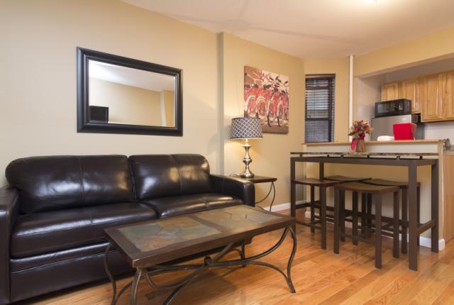 Fantastic 1 Bedroom Apartment in Greenwich Village photo 51563